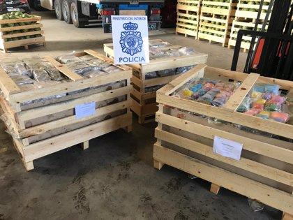 Intervenidos en Lorca (Murcia) más de mil kilos de hachís en un doble fondo practicado en palés de sandía
