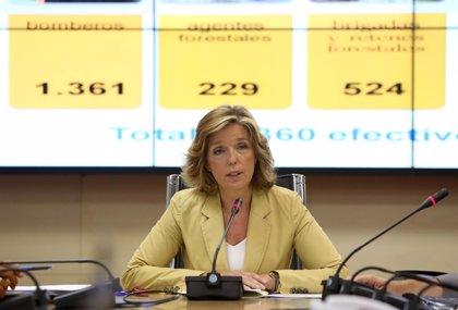 La diputada del PP en la Asamblea Regina Plañiol abandona la política para volver a su plaza a una universidad privada