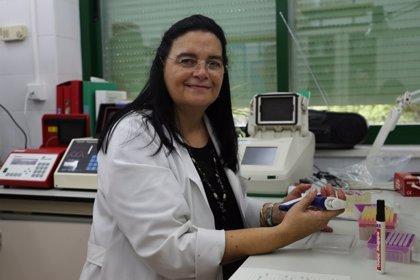 La Universidad de Córdoba analiza la variación genética en razas ovinas en busca de la 'superoveja'