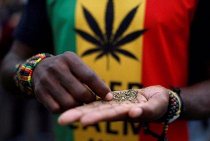 El Constitucional de Sudáfrica legaliza el consumo y cultivo de cannabis en espacios privados