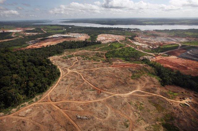 Deforestación del Amazonas