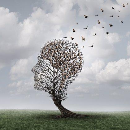 Contaminación y demencia, ¿tienen alguna vinculación?