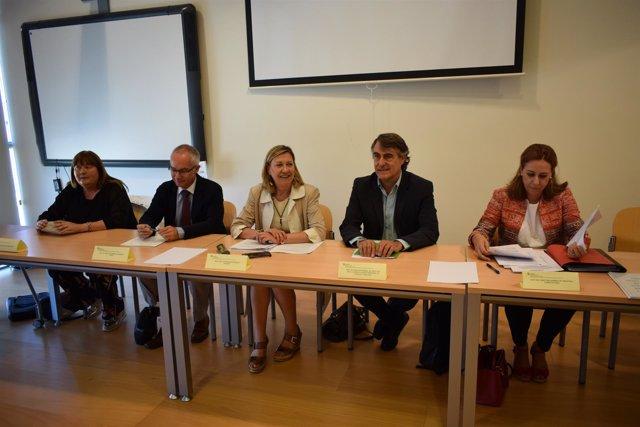 Del Olmo(C) preside la reunión del  Comité de Seguimiento 19-9-2018