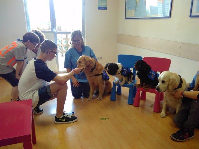 Terapia con perros de asistencia en niños con síndrome alcohólico fetal