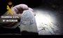 La Guardia Civil destruye material explosivo hallada por un aficcionado a la espeleología en una cueva de Balsa de Ves