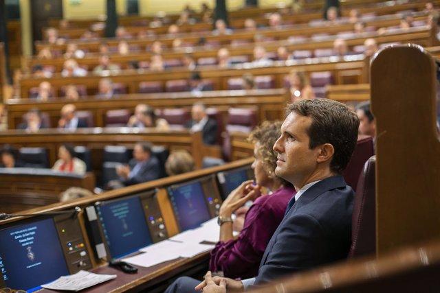 Pablo Casado, líder del PP, en sesión de control en el Congreso