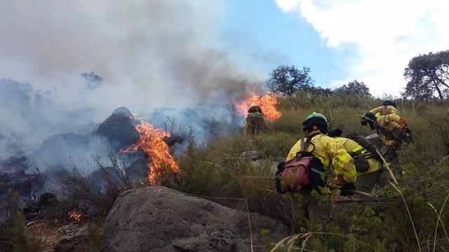 Incendio forestal en el Cerro del Asno