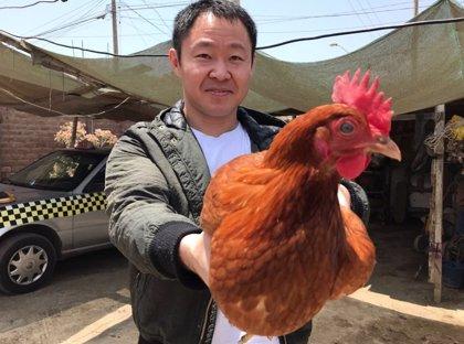 De congresista a vendedor de huevos, así es la nueva vida de Kenji Fujimori