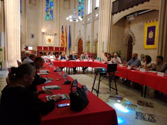 Consellera de Salud, P. Gómez, en una reunión del IdISBa