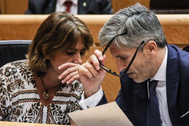 Fernando Grande- Marlaska y Dolores Delgado hablan en el Senado