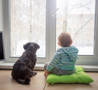 De bebé sensible a ¿niño altruista?