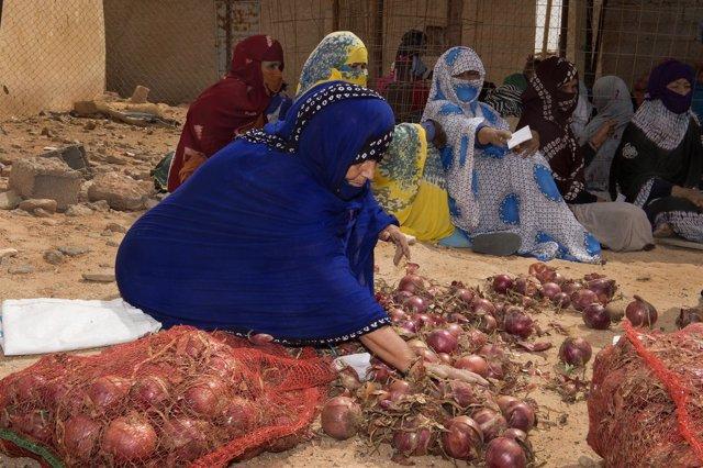 Distribución de productos frescos en los campamentos de refugiados saharauis