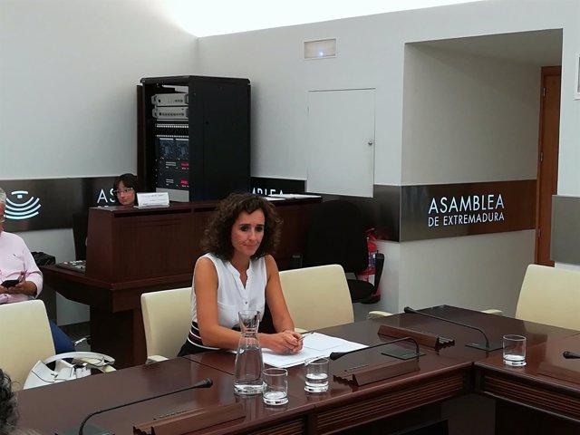 Olga García durante su comparecencia este miércoles en la Asamblea