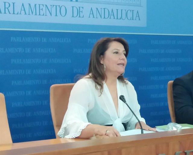 PP-A pedirá en la comisión de la Faffe la comparecencia de Carnero, Fernández, Villén y del dueño del prostíbulo