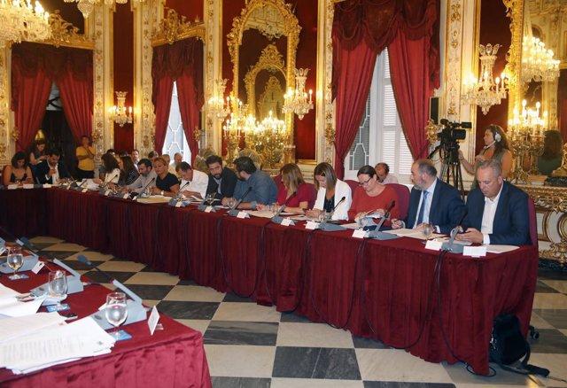 Pleno Ordinario de septiembre de la Diputación de Cádiz
