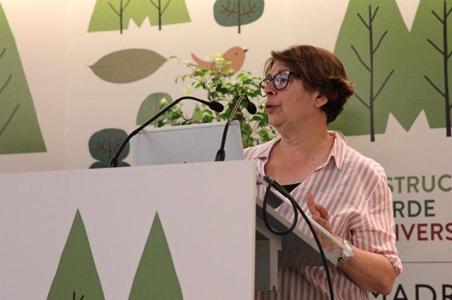 La concejala de Ahora Madrid, Inés Sabanés