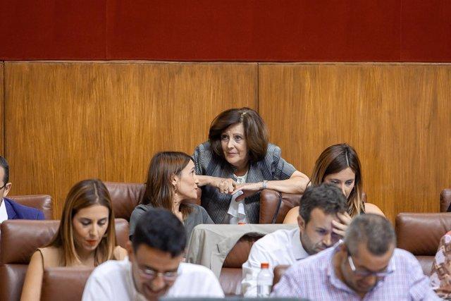 La consejera de Igualdad, María José Sánchez, en el Pleno del Parlamento