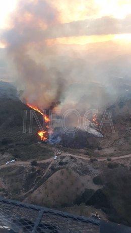 Incendio declarado en El Burgo