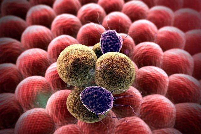 Metastasis, cáncer