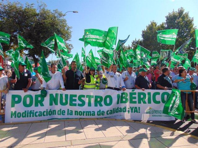 Manifestación de agricultures en la Feria de Zafra