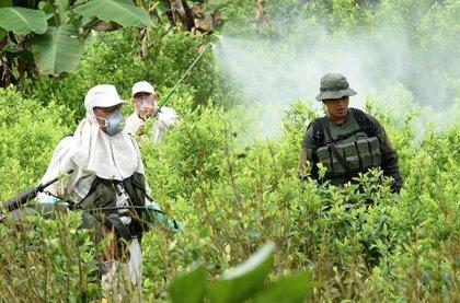 Duque reforzará su política antidrogas en Colombia
