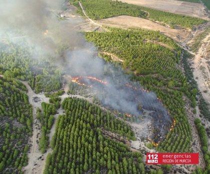 Un incendio forestal calcina una hectárea de terreno en la Sierra de Sopalmo, en Abarán