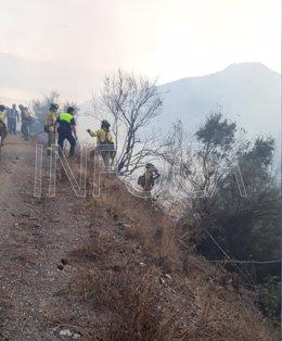 EFectivos del infoca trabajan en el incendio forestal
