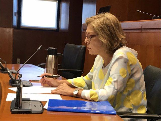 Pilar Ventura en una rueda de prensa
