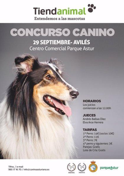 La Sociedad Canina del Principado de Asturias celebra este sábado un Concurso Nacional Canino