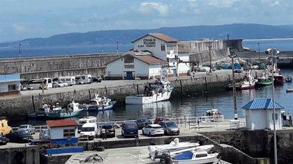 La normalidad marca el desarrollo de las votaciones en las elecciones de 59 cofradías de pescadores de Galicia