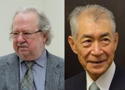 La inmunoterapia contra el cáncer gana el Nobel