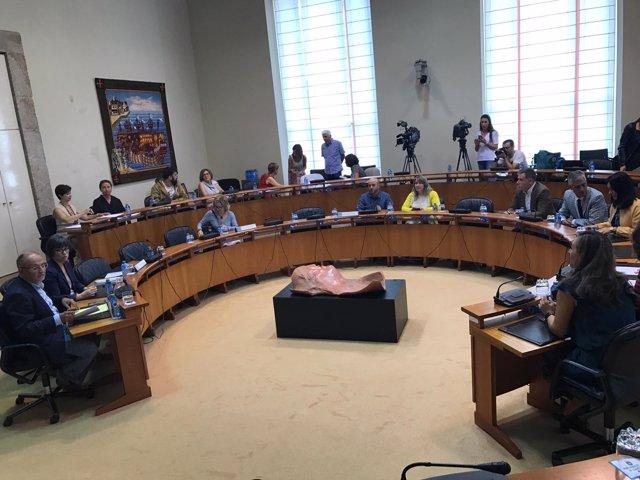 Constitución comisión de investigación del accidente de O Marisquiño