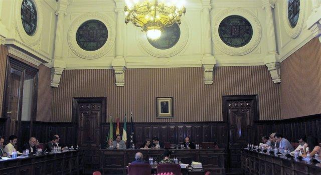 Celebración de pleno ordinario de la Diputación de Jaén.