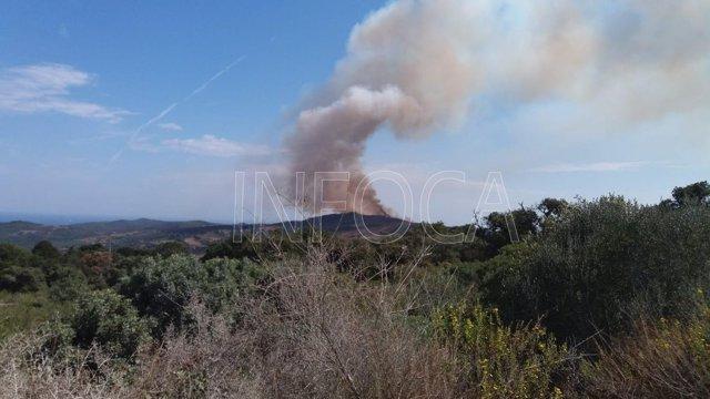 Incendio forestal en Cerro del Tambor en Tarifa