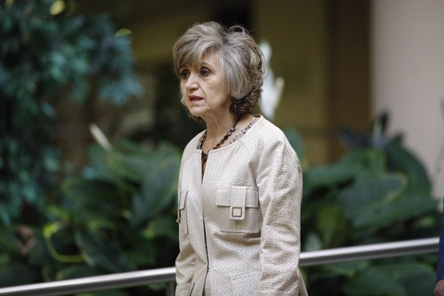 La ministra de Sanidad, María Luisa Carcedo, asiste al Pleno del Consejo Estatal
