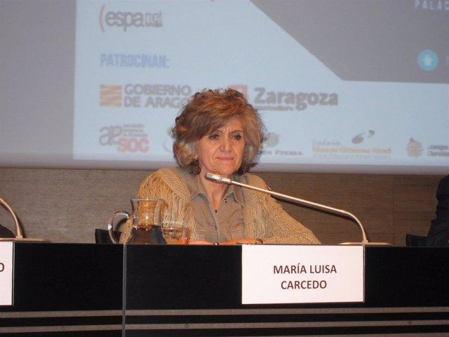 Ministra de Sanidad, Consumo y Bienestar Social, María Luisa Carcedo