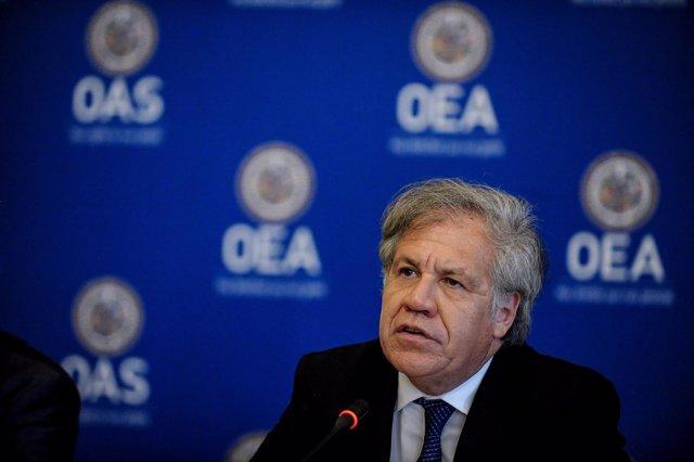 El secretario general de la OEA, Luis Almagro