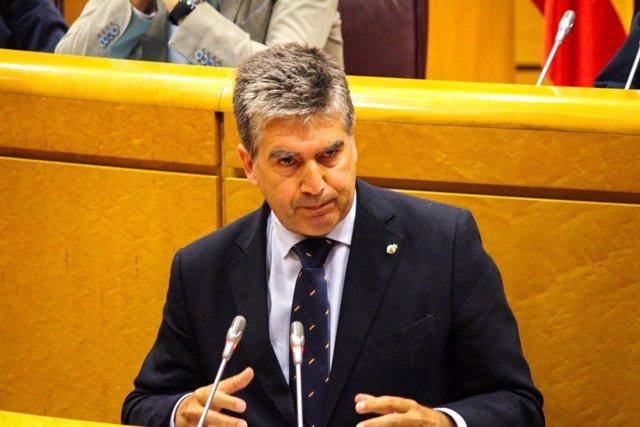 Ignacio Cosidó, portavoz del PP en el Senado, interviene desde la tribuna