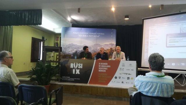 IX Reunión de Ungulados Silvestres Ibéricos