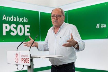 """Cornejo (PSOE-A) lamenta que Casado vuelva a Andalucía a """"insultar y a sobrepasar los límites de la decencia política"""""""