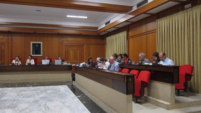 Bancada del gobierno local y Ganemos en el Ayuntamiento