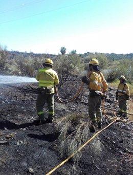Efectivos trabajan contra un incendio forestal en Niebla (Huelva)