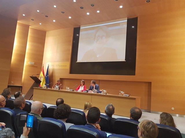 Teresa Ribera y Pedro Duque