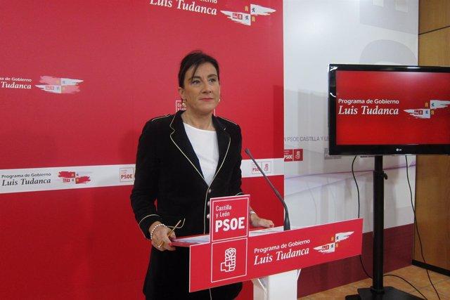Sánchez presenta el Comité Electoral del PSCL