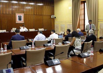 El adelanto electoral desactiva la comisión de investigación creada en el Parlamento andaluz sobre la Faffe