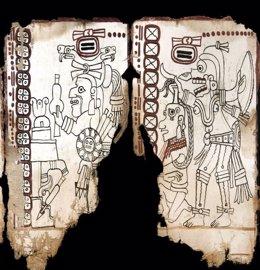 Imagen del Códice Maya de México