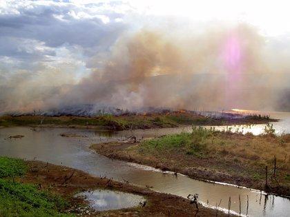 El CO2 emitido por incendios en el Amazonas multiplica lo previsto