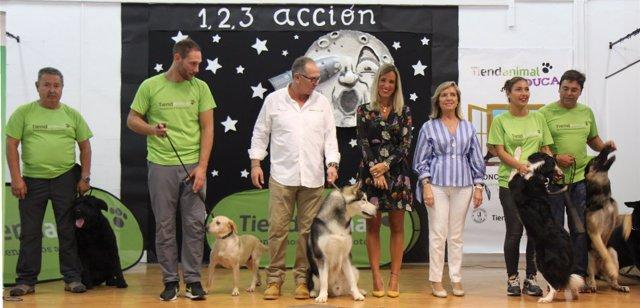 Tiendanimal maratón dog perros campaña educación alba calvo