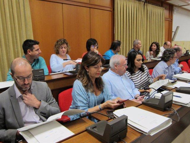 Bancada del gobierno local de PSOE e IU y del grupo Ganemos en el Pleno