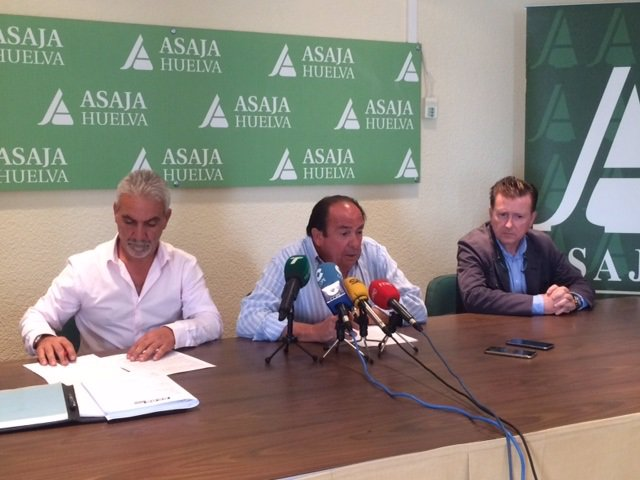 Asaja y CCOO firman el convenio del campo de Huelva.